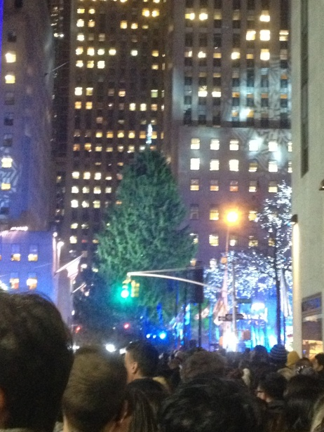 NYC unlit tree